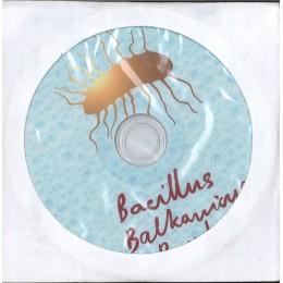 BACILLUS BALKANICUS BAND ДИСК